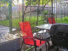 Backyard through the Window in the Summer Rain