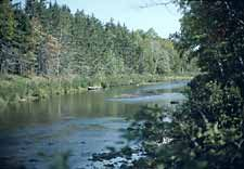 Northeastern Trout Waters Like The Beaver Kill The Battenkill Catskill Creek Or Yellow Breeches Roll Off Serious Trout Anglers T Fishing Trip Trout Catskill