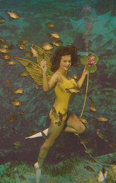 A Beautiful Mermaid - Weeki Wachee, Florida ♥ We always talked about going to Weeki Wachee Springs but never made it. They used to advertise that the mermaids would drink a bottle of Coca Cola underwater.