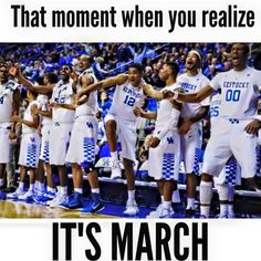 Every since cal has came to uk March mad dense has become such a special thing… Uk Wildcats Basketball, Basketball Memes, Kentucky Basketball, Kentucky Wildcats, Kentucky Athletics, I In Team, Kentucky Sports, Go Big Blue