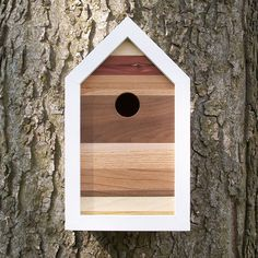 The songbirds in your neighborhood will take flight over this modern-styled birdhouse. Made from various shapes, sizes, and species of scrap