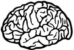 Resultat d'imatges de vinilos decorativos de cerebros