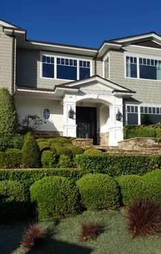 Aren't these layers and layers of evergreens and boxwoods fabulous? It's a great solution for a slopping front yard.