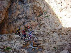 Mountain Bike Tour, Mountain Biking, Tours