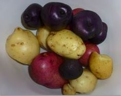 Eat the rainbow!  A rainbow of colored potatoes that is!  You can grow you own potatoes in a variety of colors:  Blue, Purple, Yellow, Orange, White, Scarlet, Red and more....  Farmers Hint:  Just do not eat the green ones they contain a toxin.
