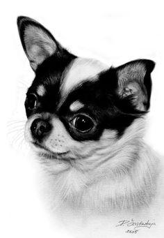 1c4345e3dd3da Chihuahua Peinture par Danguole Serstinskaja (Lituanie)