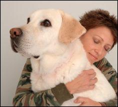 Gulf Coast Veterinary Specialists  Stunning dog!