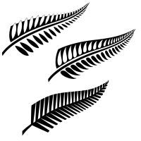 Maori fern hi-res flash tattoo