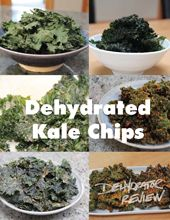 Link to a ton of recipes on this site: Dehydrator Review. Can view listed by recipe or by food. Cool!