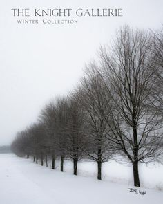 """This is one of my favorite winter portraits; captured on a snowy day near Old World Wisconsin in Eagle, Wisconsin. Te best selling size at The Knight Gallerie is the 11x14. This was published in Terry Rydberg's Adobe InDesign textbook: """"Exploring Adobe InDesign CS6""""  (page 54!)  #knightgallerie"""