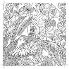 This Coloring Book For Adults Will Make You Feel Young Again Bird Coloring Pages, Pattern Coloring Pages, Doodle Coloring, Coloring Pages For Kids, Coloring Sheets, Coloring Books, Free Adult Coloring, Mandala Doodle, Bird Art