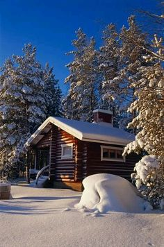 Love to rent a cabin every winter somewhere in Finland and now will take the Grandkids with us :)