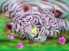 My mother - White tiger by Kentaro Nishino