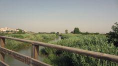 """""""Es un placer atravesar el río en verano con las sandalias en la mano"""".  Yosa Buson"""