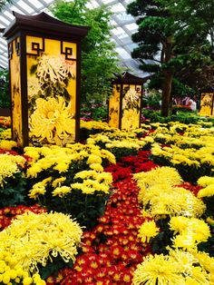 Dazzling Mid-Autumn Celebrations 2015 @ Gardens by the Bay | SAys! Happy Mums