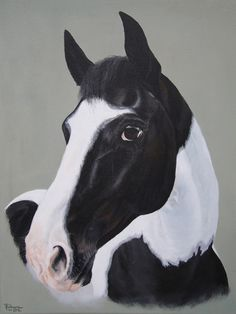 """'Wizzard's Puzzle'. Coloured Irish Sport Horse gelding by Tania Robinson, 2012. Acrylic on canvas 12""""x 16"""""""