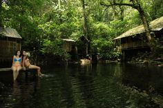 6 Hoteles en la Selva para una Experiencia Inolvidable