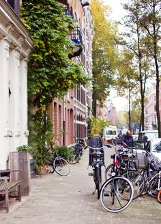 Amsterdam streets bicycles