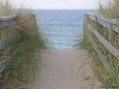 Things to See & Do in Kitty Hawk NC   Outer Banks Vacation Rentals