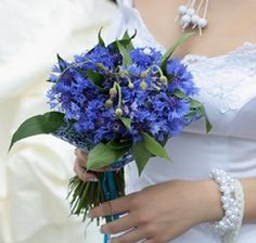 Cornflower Wedding Bouquets and Decorations Bridal Bouquet Blue, Summer Wedding Bouquets, Blue Wedding Flowers, Blue Bridal, Bridal Flowers, Flower Bouquet Wedding, Bridesmaid Bouquet, Floral Wedding, Blue Flowers