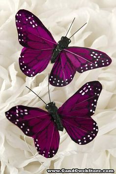 46 best Ideas for purple bridal shower ideas diy color schemes Butterfly Quotes, Butterfly Pictures, Butterfly Baby, Butterfly Kisses, Butterfly Flowers, Beautiful Butterflies, Beautiful Flowers, Silk Flowers, Butterfly Painting