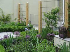 Great trellis idea Bloom Time with UK Garden Designer Richard Miers Gardenista Espalier Fruit Trees, Fruit Tree Garden, Wire Trellis, Garden Trellis, Trellis Fence, Wire Fence, Back Gardens, Outdoor Gardens, Small Gardens
