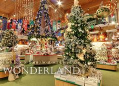 Bronners is the world's largest Christmas store located in  Frankenmuth, Michigan. It's the size of 5.5 football fields!