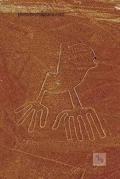 Nazca Lines SHOWING SAME BIRD OR WAS THIS SYMBOL FOR FLIGHT AND AIRPORT?
