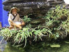 Viajes a Vietnam – Templo de la Literatura dedicado aConfucio24