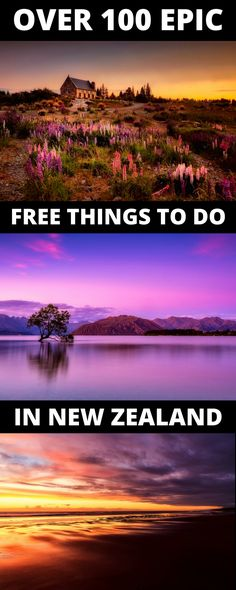 If you want to travel New Zealand for cheap, these free things to do in New Zealand will help you have the best trip ever  while not hurting your budget