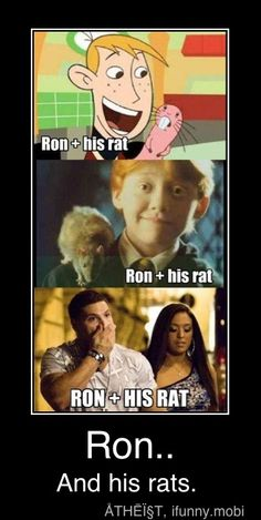 Ron and his rat.the last one is too funny I Smile, Make Me Smile, Funny Celebrity Pics, Shirt Diy, Marianne, Lol, To Infinity And Beyond, Favim, Just For Laughs