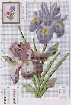 Iris cross stitch
