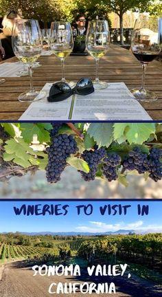 If you're planning a trip to California's Sonoma County, here are some of the Sonoma Valley wineries you need to have on your list to visit! Sonoma California, California Travel, Valley California, Work Travel, Travel Usa, Travel Inspiration, Travel Ideas, Budget Travel, Travel Tips