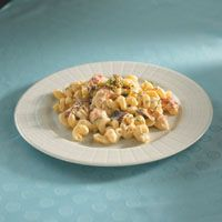 Cavatappi with fresh lobster, shiitakes, fresh basil, Brie, fontina and garlic herb cheese