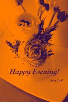 Happy Evening!
