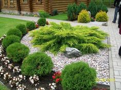 Ideas For House Front Landscaping Small Landscaping Plants, Front Yard Landscaping, Landscaping Design, Amazing Gardens, Beautiful Gardens, Garden Yard Ideas, Small Garden Design, Garden Planning, Garden Inspiration