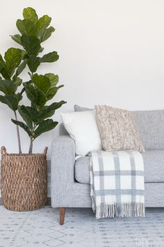 Looking for some simple tips and tricks for decorating a couch? Today we are sharing our best advice for creating a layered, effortless look on your couch without breaking the bank! Here are our tips for choosing couch pillows. #throwpillows #couch #graycouch