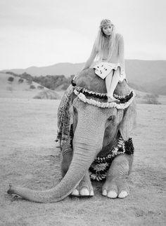 #Travel goals #elephant #GoYourOwnWay
