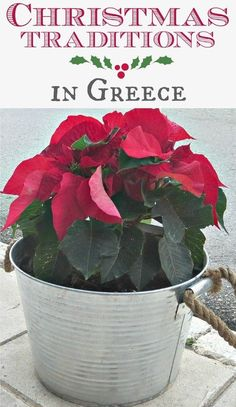 Christmas Traditions in Greece, Int'l Bloggers Club Challenge, theboondocksblog.com Christmas Activities, Christmas Crafts For Kids, Christmas Art, Christmas Traditions, All Things Christmas, Holiday Crafts, Christmas Holidays, Christmas Christmas, Christmas In Greece