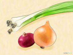 3 manières de cultiver l'oignon vert