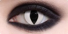 Cat Eye - White | Halloween Contact Lenses - ClearlyContacts.ca