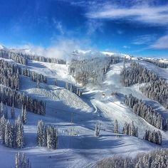 Pretty hard to concentrate when you got views coming in like this... #ski #skiing #snow #snowy #snowboard #snowboarding #snowsports #winter #winterishere #aspen #colorado #fresh #blue #trees #mountains #dreaming @aspensnowmass