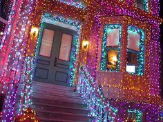 holiday awesomeness (via favim) Purple Christmas Lights, Christmas Light Displays, Xmas Lights, Little Christmas, All Things Christmas, Christmas Holidays, Merry Christmas, Christmas Decorations, Holiday Lights