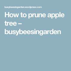 How to prune apple tree – busybeesingarden Pruning Fruit Trees, Apple Flowers, New Growth, Apple Tree, Small Patio, Gardening, Apples, Roses, Outdoor