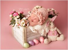 adorable baby newborn photography/easter photography