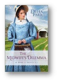see review at http://www.verasbookreviewsandstuff.com/DIY/review/novel/book-reviews-of-any-novel/book-reviews-on-line/book-review/reader/author/read/book/the-midwifes-dilemma-by-della-parr/#more-3500