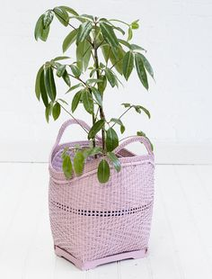 These divine shopping baskets make the perfect accessory for your home.  Fill them with magazines, quilts or plants and dot them around to create splashes of storage colour.    Also available in pink, white, yellow and turquoise.   They measure 45cm tall and 40cm wide and the large is  50cm tall and 45cm wide.