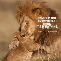 Inspiring Quote Want to start your online business ? Badass Quotes, Real Life Quotes, True Quotes, Lion And Lioness, Lion Of Judah, Citation Lion, Le Roi Lion Film, Lioness Quotes, Lion Couple