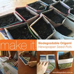 Learn to make Biodegradable Pots for Seedlings- Origami Newspaper Method DIY step-by-step instructional www.aboutthegarden.com.au #recycle #repurpose #paper #newspaper #greenliving #garden #grow #seeds #organic #biodegradable #fortomorrow #atg2014 #aboutthegarden #searles #fun #kids #children #project #origami #foldit