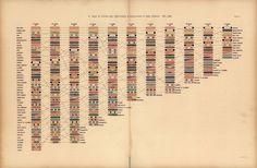 Graphic Specimens : Photo
